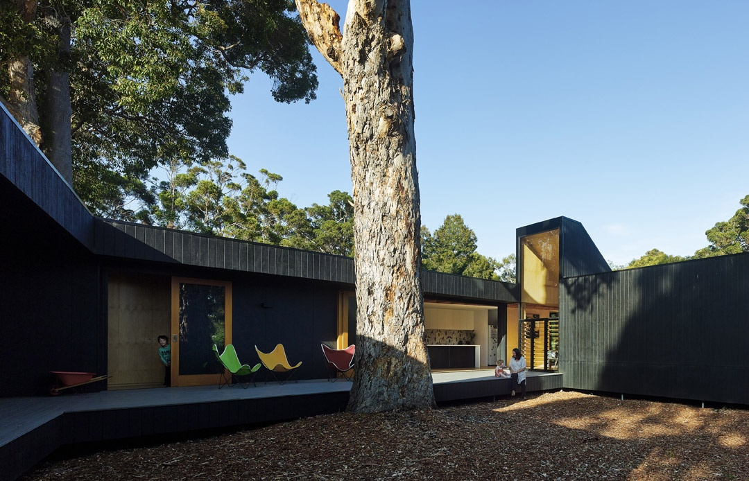 Karri Loop House by MORQ. Image. Peter Bennetts